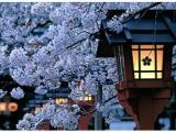 5 Days 4 Nights Japan South Hokkaido All Season