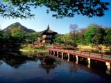5 Days Essence of Korea