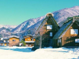7/8 Days 5 Nights Japan & Shirakawa Experience