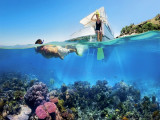 Explore the Natural Wonders of Cairns and the Great Barrier Reef with SilkAir